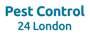 Pest Control 24 London