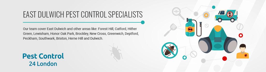 dulwich pest control