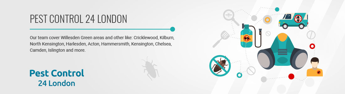 Pest Control 24 London Specialists