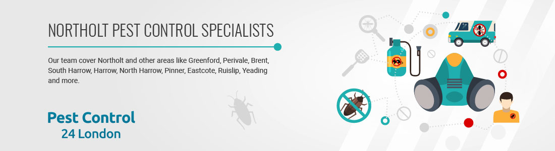 Northolt Pest Control Specialists near you.