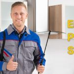 Emergency Pest Control Services