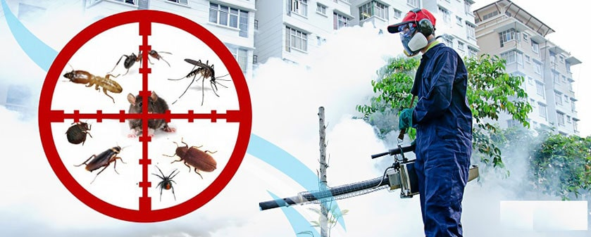 Pest Control Fumigation