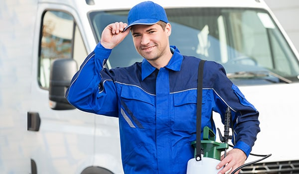 Commercial Pest Control Services for Businesses