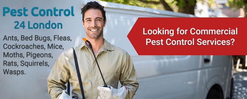 Commercial Pest Control Services in London